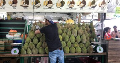 Durian: the foul-smelling fruit that could make Malaysia millions