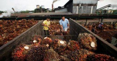 CB Industrial bags RM71.17m Papua New Guinea deal