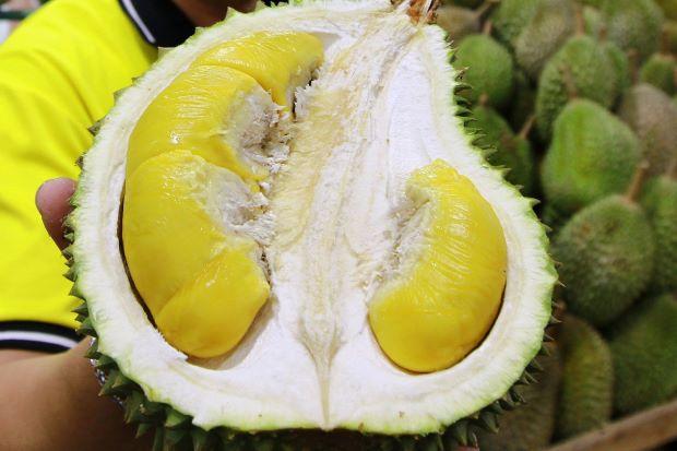 Durian: Johor looking for next big hit