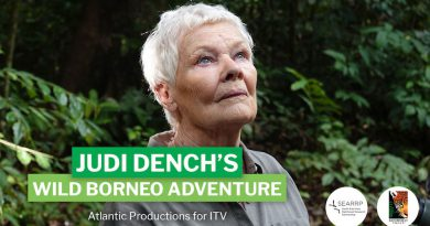 Actress Judi Dench's stint in Sabah opened her eyes to 'complex issue' of palm oil industry